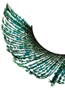 Paradise Dreams - Green Feather Eyelashes 630