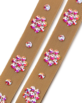 Dance Shoes Straps ASWS 04