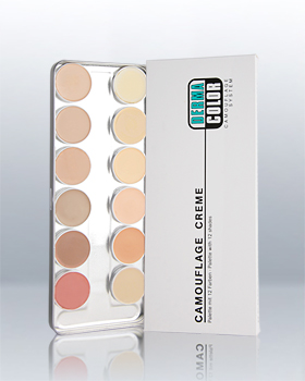 DC Camouflage Cream 12 Colors Palette 75004