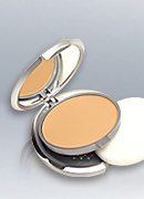 Kryolan Dual-Finish Compact Makeup 9120